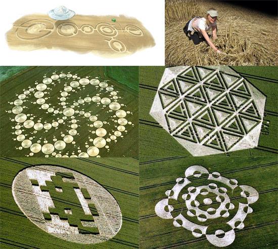 crop-circles-field-photo-00
